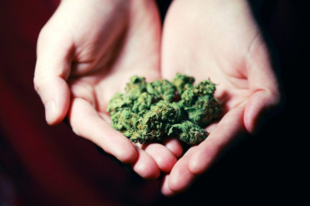Primary Care & Prescribing Cannabis - GCI Content Hub - Global Cannabis Intelligence
